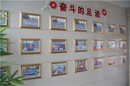 万通毕业照片墙