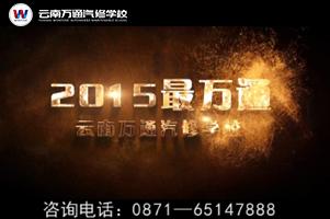 云南万通走过最美2015年